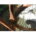 12373 Zaunelement 1,00 m Jugendstil 1900