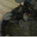 Wasserspeier Brunnen Bronze 1,83 m